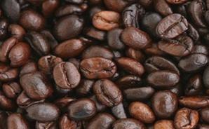 Hạt cà phê Robusta Arabica